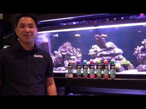 Saltwater Aquarium Water Care Essentials