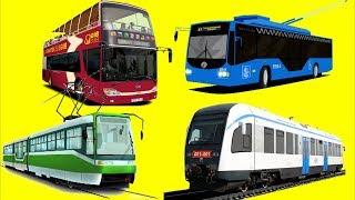 Мультфильмы для детей про машинки и поезда Городской транспорт - Развивающий мультик