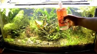 Pytania i odpowiedzi Start akwarium a nawozy oraz co2