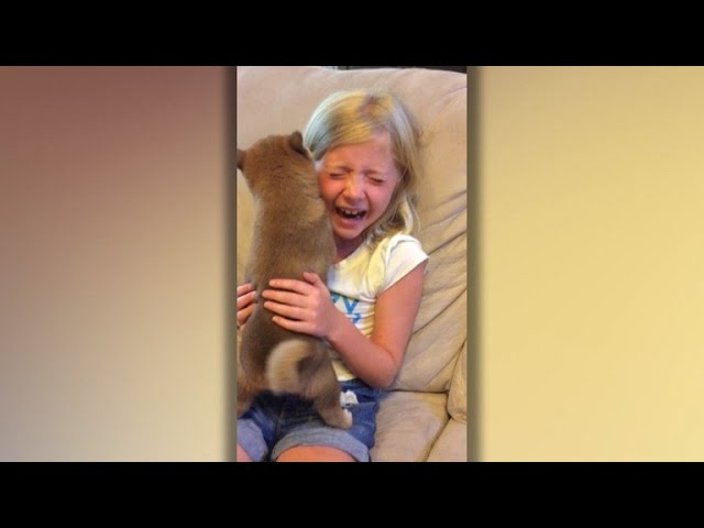 Watch Little Girl Freak Out When Parents Surprise Her With Dog For Birthday