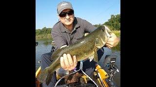 Remembering Summer Bass Fishing