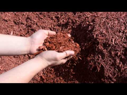 Red Dyed Mulch for Sale NJ & NY | Best Prices, Fast Delivery