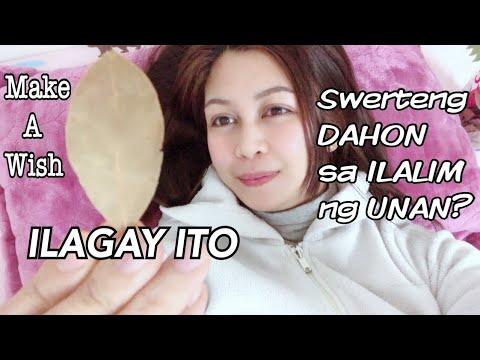 Maglagay Ng DAHON Ng LAUREL Sa Unan Bago Matulog |Pampaswerte | Jojie Llorente