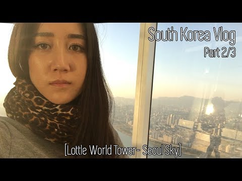 Follow Me Around South Korea's Lotte World Tower Sky Tour | Vlog 2/3