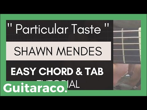 Shawn Mendes - Particular Taste // EASY Guitar Tutorial (Chords & TAB)