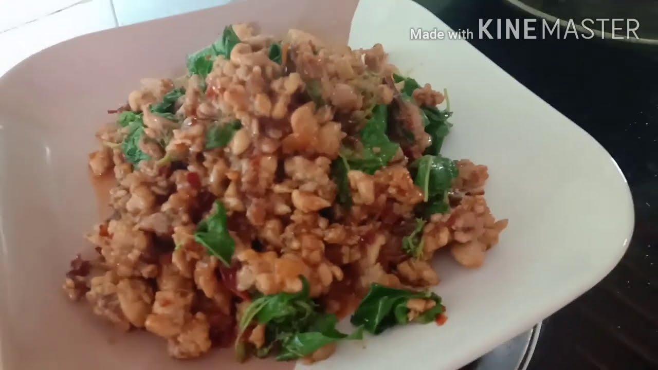#ผัดกระเพราไก่ #พริกแห้งผัดกินเองง่ายๆทำขายก็รวย ทั้งเผ็ดอร่อย ทองปานปลูกผัก