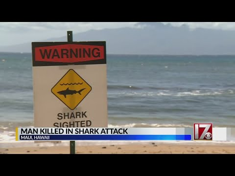 tourist-dies-after-shark-attack-near-kaanapali-beach-in-hawaii