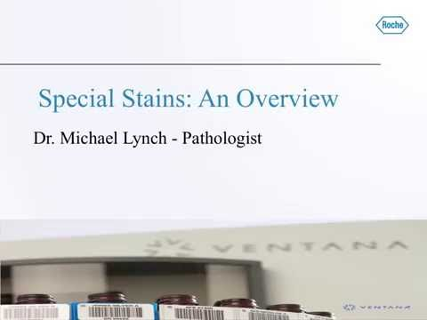 Clinical Importance of Special Stains