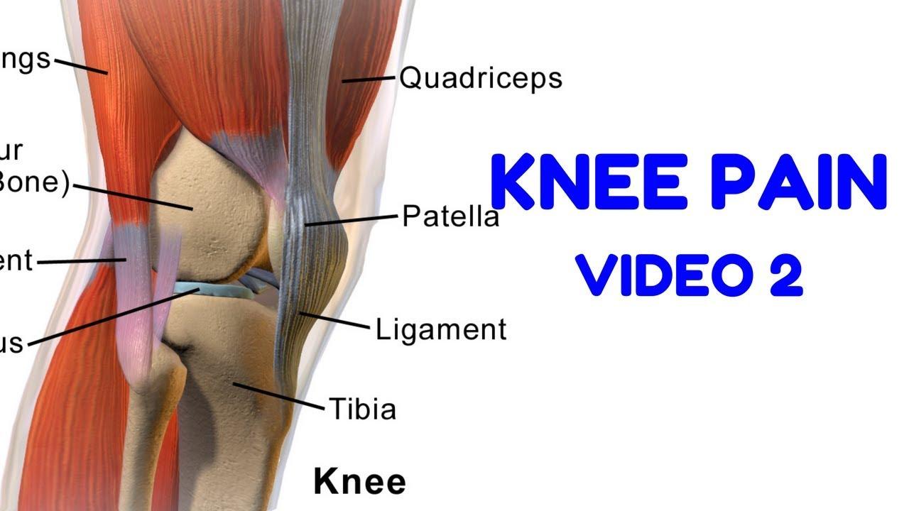 Knee Pain Rehab 2 - Calf Raises