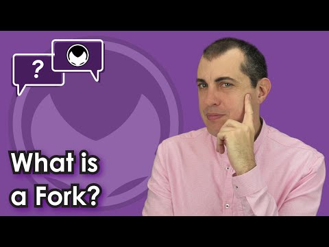 Bitcoin Q&A: What Is A Fork?