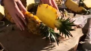 Fruit Salad Combo – Food  Lover's Market