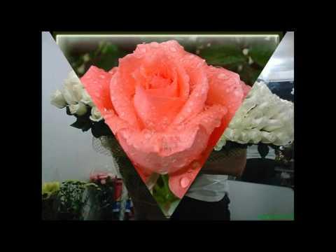 Этот клип для прекрасной женщины Миллионы цветов для тебя...