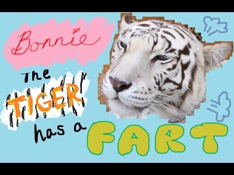 Leopard Fart