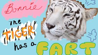 Bonnie the tiger has a fart