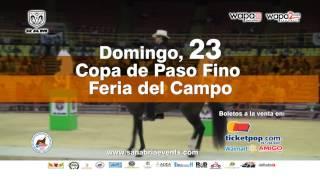 Feria de Campo Dorado 2015