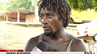 Man sells snakes for living