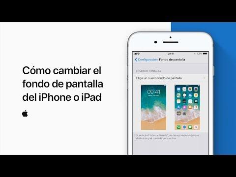 54fc81a48e3 Cómo cambiar el fondo de pantalla del iPhone o iPad — Soporte técnico de  Apple - YouTube