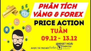 Phân Tích Vàng & Forex Theo Price Action Tuần 09/12-13/12