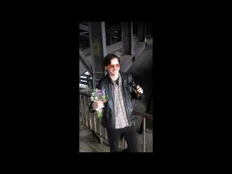 1196025a424e ほぼ日手帳 カズン cousin A5サイズ 専用カバー ほぼ日手帳 カバー 2018 2019 版に対応 -t-dental.com.mx/1983