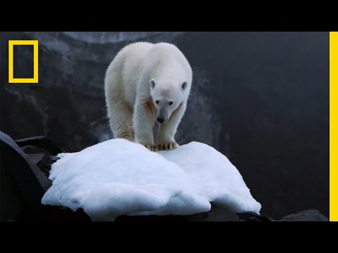 Climate Change Impacts All of Us, But There's Hope   National Geographic