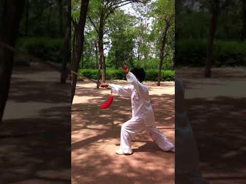 Expert demonstrates Tai Chi in China