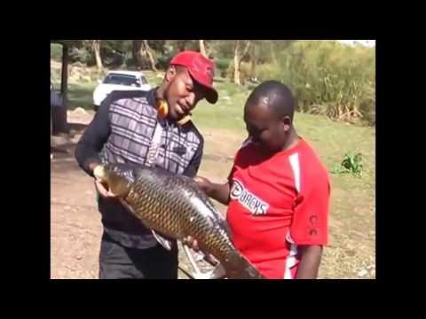 latest kalenjin music