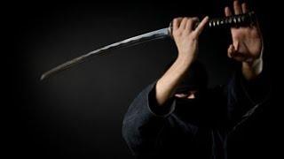 ninjutsu Stephen K  Hayes   Ninja Night Warriors Vol 2