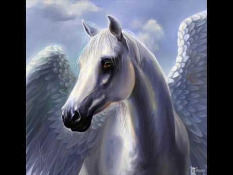 einhorn pferd