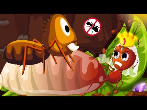 Baby Panda Ant Colonies - Fun Explore & Play Funny Wild Ants Cartoon Animation Games Learn Ant Life
