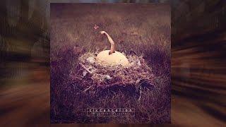 Circuncelion - Gure Bazterrak
