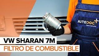 Video-instrucciones para su VW SHARAN
