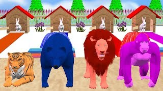 Rabbit Change Into Wild Animals - For Kids Rhymes