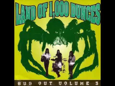 Various – Land Of 1,000 Dunces - Bug Out Vol 3 : 60's Garage Rock, Novelty Surf R&B Music ALBUM Lp