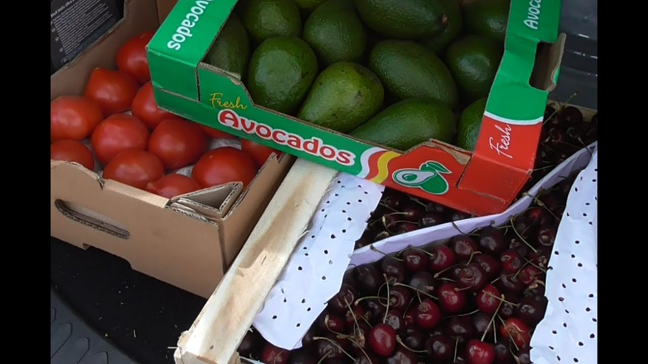 «фуд сити»: большой выбор продуктов питания по выгодным ценам. Подробную информацию можно узнать по телефону: +7 495 995-99-99.