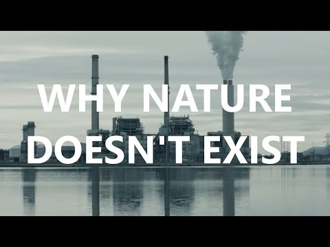 Why Nature Doesn't Exist: The Romantics, Slavoj Žižek and Da