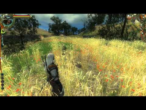 46. Let's Play The Witcher: Enhanced Edition [BLIND] - Temptation