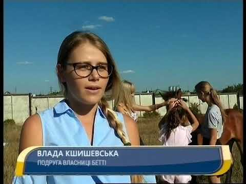 Канал Кировоград: Врятоване лоша