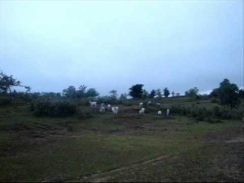 400 Hectares Agricultural Land For Sale in Isabela, Cagayan Valley, Philippines