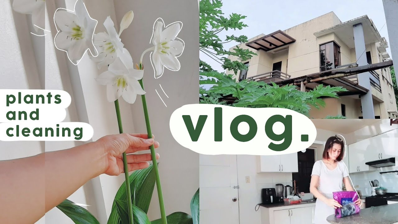 Download VLOG: clean with me + plantita day + grocery + garage decluttering   Philippines   Candy Balan