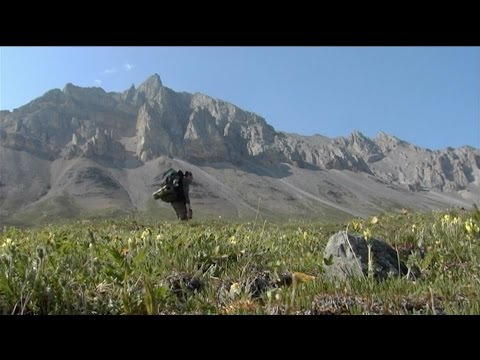 Anywhere, Alaska: Natural Resources & Nature