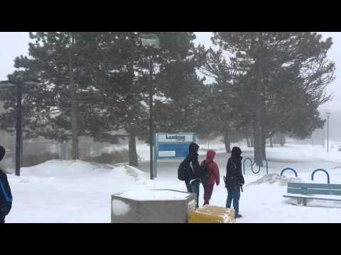 Lambton college - Snow Strom in sarnia