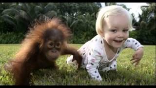 Фото дети и животные приколы