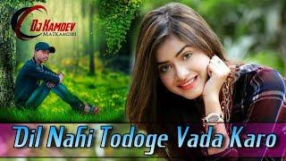 Dil Nahi Todoge Vada Karo   दिल नहीं तोड़ोगे वादा करो  New Gujarati Dj Song    Anita Rana Love Song