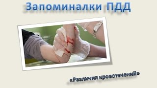 #7 «Различия кровотечений» Запоминалки ПДД 2016 Беларусь ПДД 2016 Россия