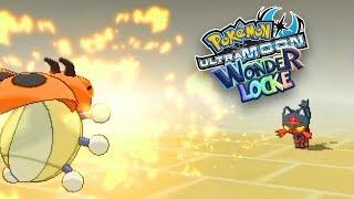 LEDYBA NOOOOO!! [#4]   Pokémon Ultra Sun And Moon Wonderlocke