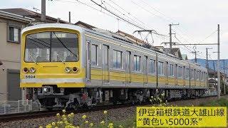"""伊豆箱根鉄道大雄山線""""黄色い5000系"""" 2019年4月"""