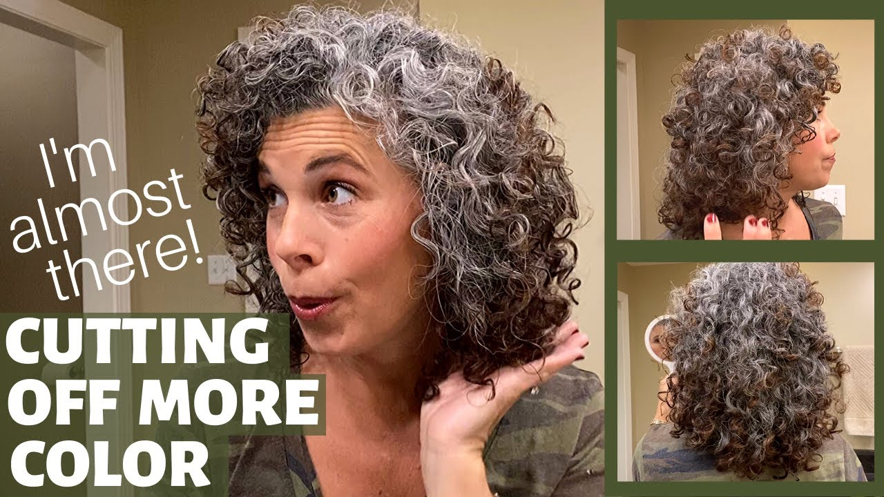 My Transition To Gray Hair At 17 Months Going Gray With Curly Hair Youtube