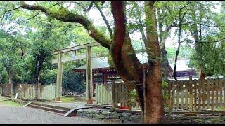 緑に包まれた神殿  和歌山日前宮 (國懸神宮・日前神宮)