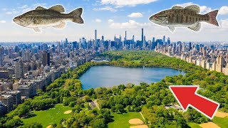 Fishing in Central Park! New York City! (Epic)