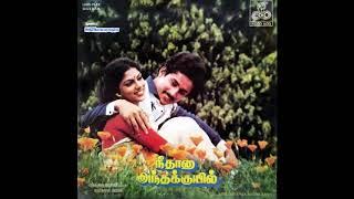 Maanam Karukkuthu :: Nee Thaana Andha Kuyil : Remastered audio song